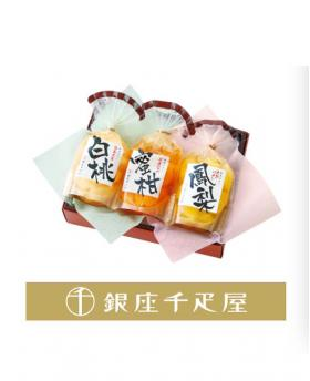 Ginza 千疋屋 Real Flesh Pudding 3 Tastes - 3 Pieces