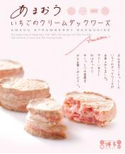 Japan Fuubian Strawberry Cream Cookie