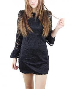 Women's Horn Sleeve Lace Dress
