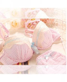 JAPANESE PLAID LACE BRA SETS